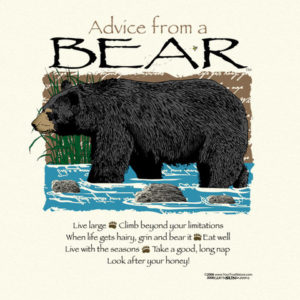 advicebear_large